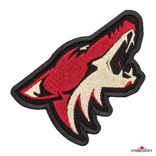 Arizona Coyotes NHL frontal