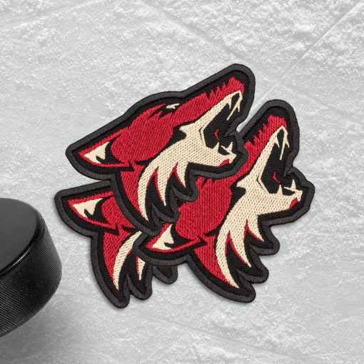 Arizona Coyotes NHL ice