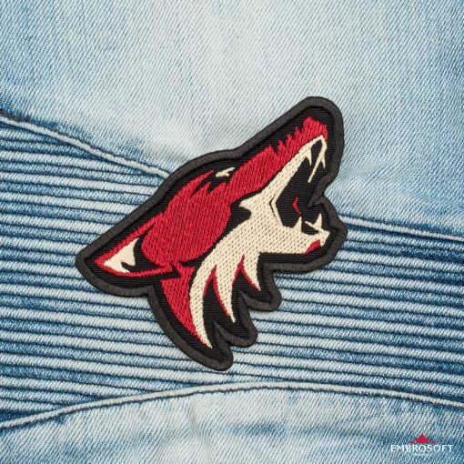Arizona Coyotes NHL jeans in front