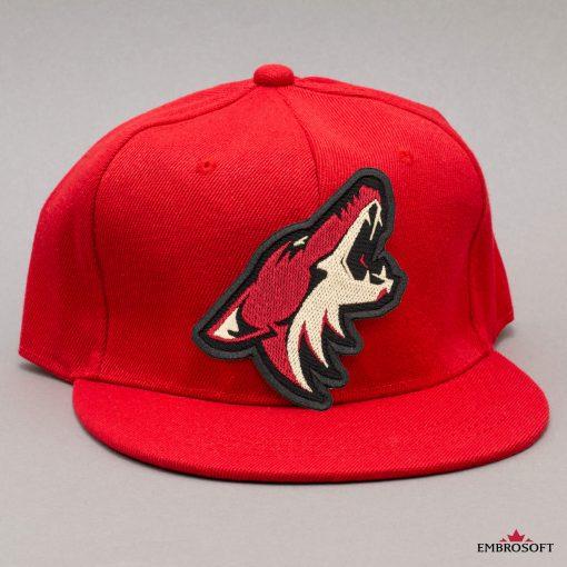 Arizona Coyotes NHL red cap